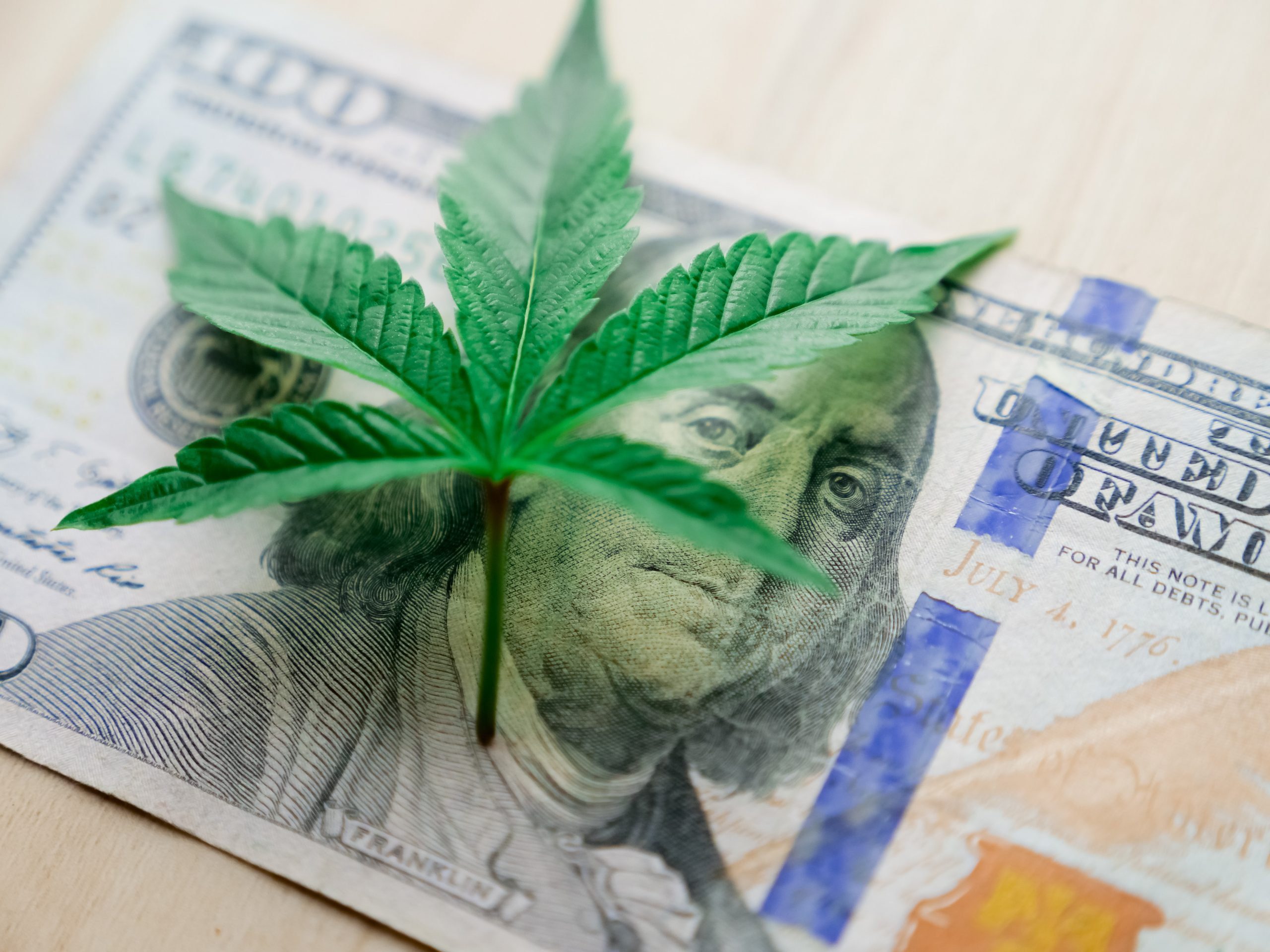 How much should CBD products cost